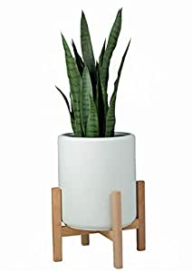 "Amazon.com : Plant Stand /13"" Mid Century Modern Plant"