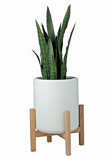 Compare Price Indoor Plant Pedestal On Statementsltd Com