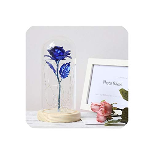 FanRen Artificial Flower Medium-Sized Beauty Rose Glass Dome Rose Eternal Rose red Rose Rose Preservation, Belle Rose, Special Romantic Gift,Blue ()