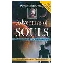 Adventures of Soul Case Studies of Lives Between Lives