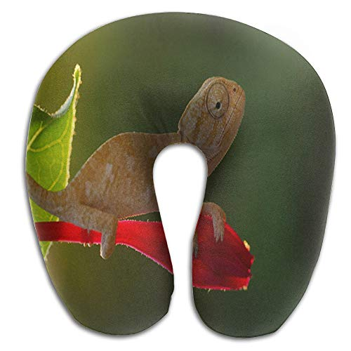 IDO Chameleon Reptiles Animals U-Shaped Pillow Great Comfortable U-Shaped Body Pillowfor Women&Men by IDO