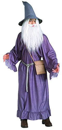 Old Man Up Costume (Adult Lord of the Rings Gandalf Costume-STD Size)