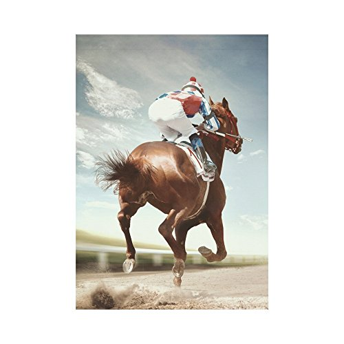 INTERESTPRINT Cool Racing Horse Polyester Garden Flag Outdoor Banner 28 x 40 inch, Vintage American Sport Decorative Large House Flags for Party Yard Home Decor ()