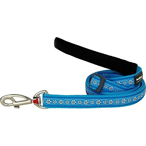 Red Dingo Daisy Chain Dog Lead, Large, Turquoise by Red Dingo
