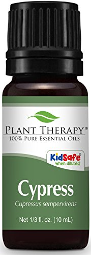 Plant Therapy Cypress Essential Oil. 100% Pure, Undiluted, Therapeutic Grade. 10 ml (1/3 oz). (Oil Thyme Plant Therapy)