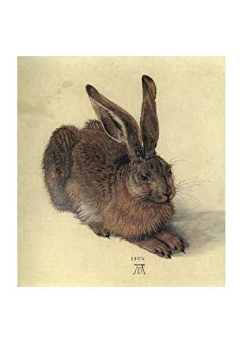 Spiffing Prints Albrecht Durer - Young Hare - Small - Archival Matte - Unframed