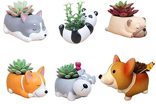 6 PCS Set Cute Cartoon Animal Corgi Pug Schnauzer Panda Husky Shaped Succulent Cactus Flower Pot/Plant Pots/Planter/Container for Home Garden Office Desktop Decoration (Plants Not Included)