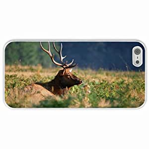 Personalized Apple iPhone 5 5S Back Diy PC Hard Shell Case Deer White