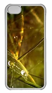 LJF phone case Customized ipod touch 5 PC Transparent Case - Dew Drops On Grass 2 Personalized Cover