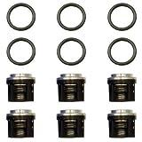 3430-0491 Hypro Valve Kit for 2300 Series Pumps