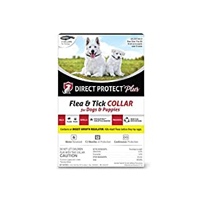 Direct Protect Plus Flea & Tick Collars for Dogs & Puppies, One Size Fits All, 2-Pack, 12 Months Protection 52