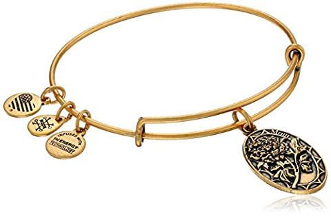 Alex and Ani Because I love you, Mom II Expandable Rafaelian Gold-Tone Bracelet - Mom Jewelry