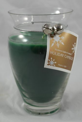 Northern Lights Candles Holiday Glass Candle Vase (Fraser Fir, 14 oz)