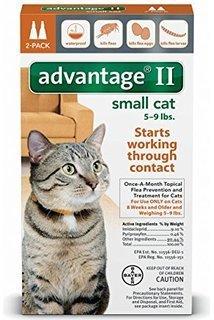 [Bayer Healthcare Advantage II Small Cat (2 Pack)] (Cat Topical Flea Treatment)
