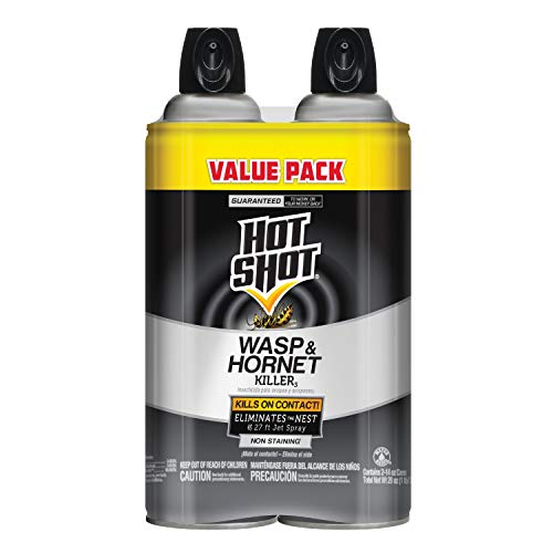 (Hot Shot Wasp & Hornet Killer, Aerosol, 2/14-Ounce)