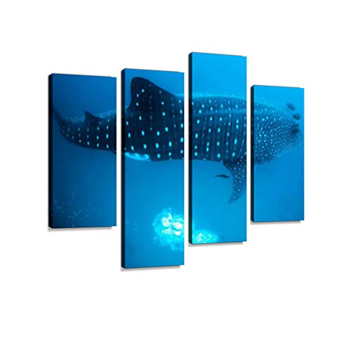 Whale Shark Scuba Divers Darwin Island Galapagos Islands Ecuador Canvas Wall Art Hanging Paintings Modern Artwork Abstract Picture Prints Home Decoration Gift Unique Designed Framed 4 Panel