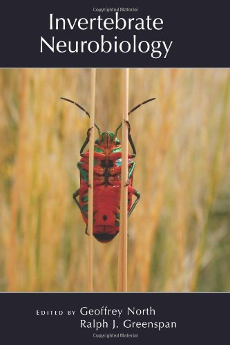 Invertebrate Neurobiology (COLD SPRING HARBOR MONOGRAPH SERIES)