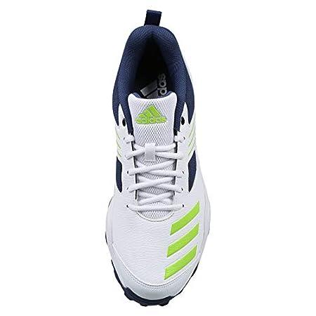 men's adidas cricket cri hase shoes