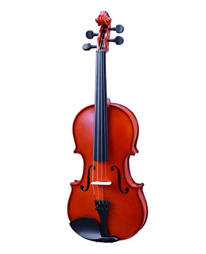 World Stage WS511001 4/4 Full Size Violin Starter Kit by World Stage