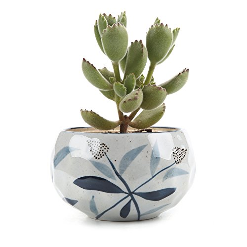 T4U 4.25 Inch Ceramic Japanese Style Clay Serial Bulrush Reed Succulent Plant Pot Cactus Plant Pot Flower Pot Container Planter - Glaze Ceramic Urn