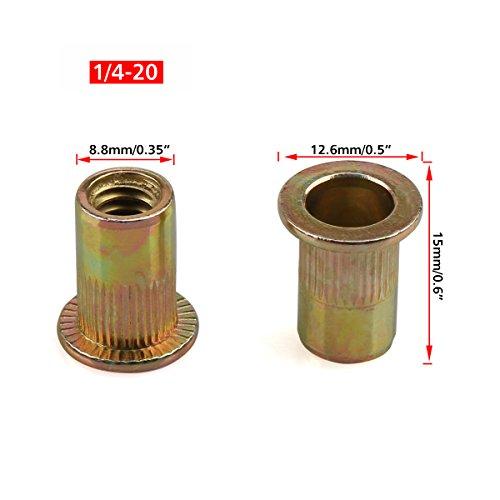 Nut Insert - 2
