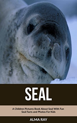 Seal: A Children Pictures Book About Seal With Fun Seal Facts and Photos For Kids