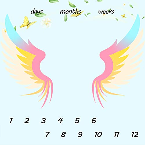 Baby Monthly Milestone Blanket Baby Photo Backdrop to Mark Age & Growth Monthly Colors Wings Butterfly Light Blue Backdrop Blanket New Mom Baby Gifts 40x40in LHFS194