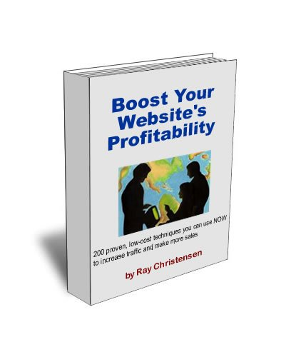 Download Boost Your Website's Profitability Pdf
