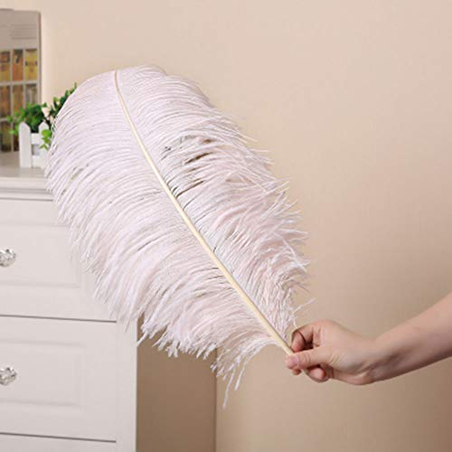 5 Pieces Blush Pink Ostrich Feather Craft Soft Plume 17.7-19.7 inches (45-50cm) Feather Additions for Gala Costumes Samba Headdress