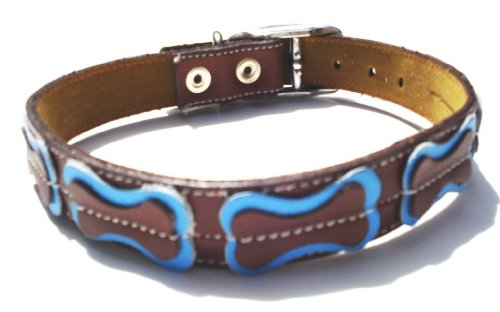 The Cool Puppy Cool Dog Collar Brown With Bones Light Blue Medium (10-12 inches)