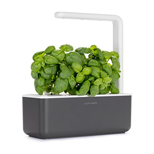 Click and Grow Smart Garden 3 Indoor Herb Garden (Includes Basil Plant Pods), Gray (Herb For Patio Ideas Garden)
