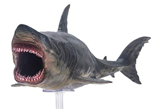 """PNSO Prehistoric Animal Models Patton The Megalodon 13"""" Ancient Sea Monster"""
