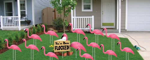 Yard Sign Stakes - Flamingo Flocking - Pink Flamingo You've Been Flocked Set. 4mm Corrugated Plastic-stores and totes flat, easy to use ()