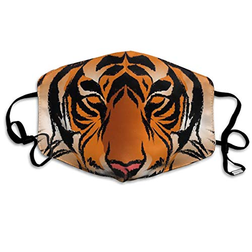 COLOMAKE Men Women Kids Fashion Accessories Pollution Respirator Dust Mask Protection from Exhaust Gas Anti Pollen Allergy Reusable Environmentally Friendly PM2.5 Striped Bengal Tiger Half Face Mask ()