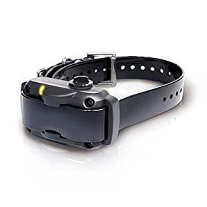 Dogtra YS600 Rechargeable 10 Level Adjustable No Bark Collar for Dogs 35+ Lbs