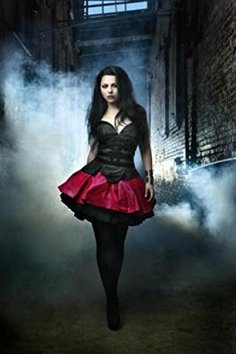 (Amy Lee & Evanescence Promos 18X24 Poster New! Rare! #BHG331937)