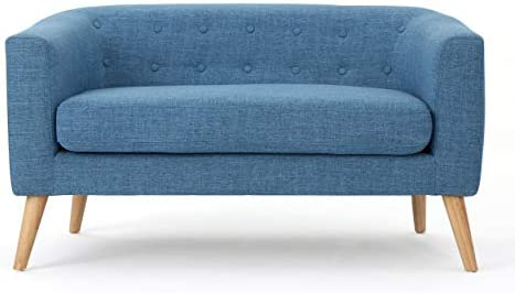 Christopher Knight Home Bridie Mid-Century Modern Loveseat, Muted Blue Fabric