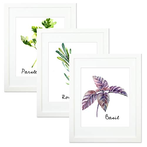 Trees&Forrest 11x14 Picture Frames with 8x10 Mat, Glass Front, Soild Wood, Wall Display Desk Standing, White, Pack of 3 (Frames 3x3)