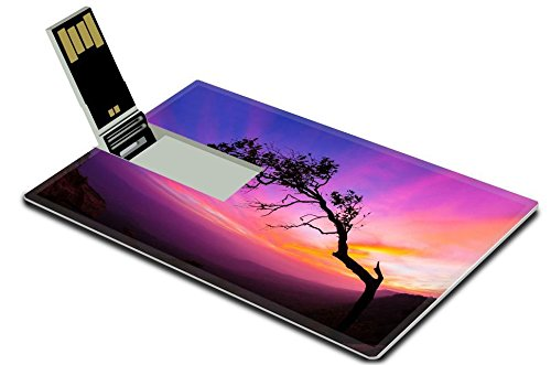 Luxlady 32GB USB Flash Drive 2.0 Memory Stick Credit Card Size Silhouette of trees in the morning IMAGE (Plant Marsh Wood)
