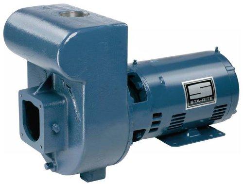 Pentair DMMG-42L Single-Phase Self Priming Medium Head Centrifugal Pool and Spa Pump, 115/230 Volt, 2-1/2 HP