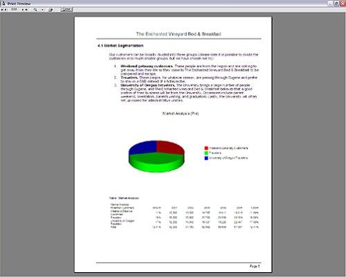 business plan pro 2004 download google