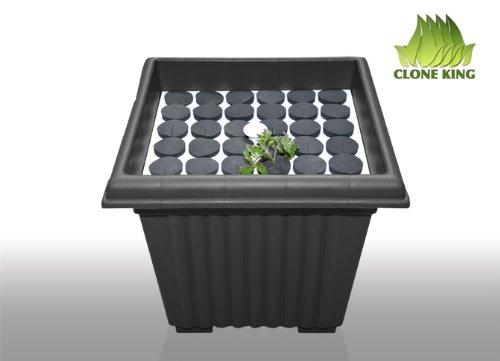 41D5XIfH3BL - Clone King 36 Site Aeroponic Cloning Machine