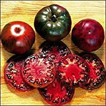 9GreenBoxs: Tomato Black Krim Tomato 30 Seeds - Russian Heirloom