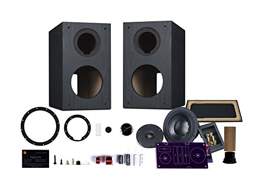 HiVi - DIY 2.2A - 2.2 Bookshelf Speakers - Near-Field Speakers - Compact Wooden Cabinet - DIY Speaker Kit - Pair - Black by HiVi Acoustics