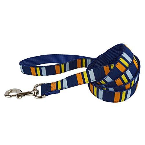 "Hamilton SLO 6 RO P53 Single Thick Dog Leash with Ribbon Overlay, Athleisure, 1"" x 6'"
