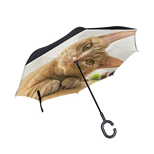 Blue Viper Orange Cat Tilts His Head Inverted Umbrellas Reverse Folding Waterproof UV Protection Straight Umbrella Double Layer for Car and Travel (Umbrella Head Tilt)