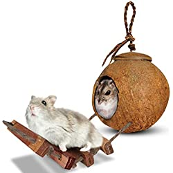 SunGrow Hamster House with Ladder, 5.1-inches (Shell Diameter) 2.4-inches (Opening Diameter), Nesting Home and Feeder, Raw Coconut Husk, Durable Habitat with Hanging Loop