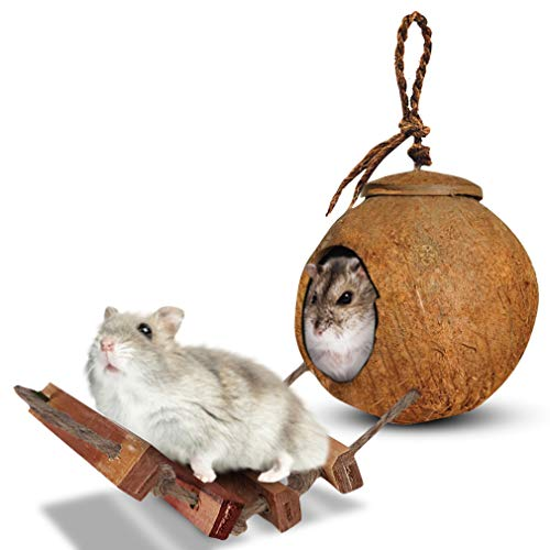 SunGrow Hamster House with Ladder – Nesting Home and Feeder – Mini Condo for Pocket Pets – Coco Texture Encourage Exercise – Raw Coconut Husk – Durable Habitat with Hanging Loop