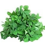 SriSatymev ® Organic Methi Seeds for Gardening (100 Seeds)
