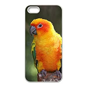 linJUN FENGThe Lovely Croci Parrot Hight Quality Plastic Case for Iphone 5s